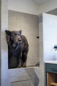 _Daval Pembroke Bootility Room, Dog Wash Station